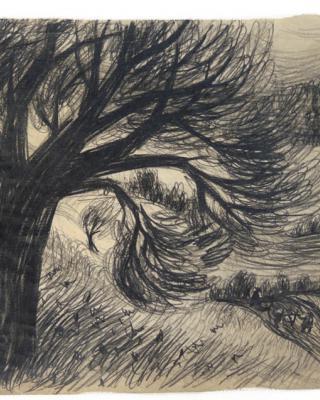 Österreich vor 1945 – Der Baum im Tal, 1938 – 1942, Bleistiftzeichnung, 21,5 x 33,5 cm