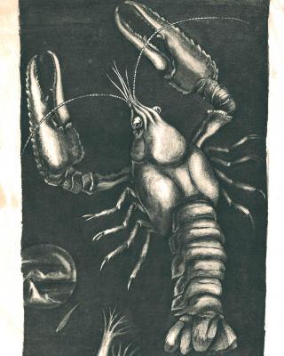 Tierkreis: Im Zeichen des Krebses, 1943 – 1945, Bleistiftzeichnung, 28 x 16 cm