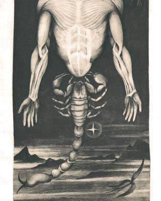 Tierkreis: Im Zeichen des Skorpions, 1943 – 1945, Bleistiftzeichnung, 24,5 x 13,5 cm