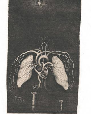 Tierkreis: Im Zeichen der Zwillinge, 1943 – 1945, Bleistiftzeichnung, 17 x 10,5 cm